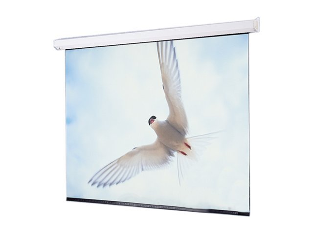 Draper Targa Projection Screen, Matt White, 12' x 12', 116012