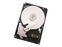 HGST 1TB UltraStar A7K1000 SATA 3Gb s 3.5 Internal Hard Drive