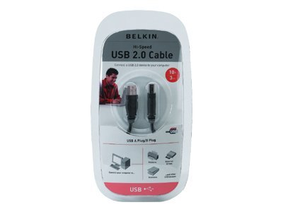Belkin USB 2.0 Cable, USB Type A to USB Type B, 10ft, F3U133V10
