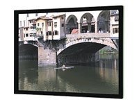 Da-Lite Imager Projection Screen, Da-Mat, 16:9, 110, Pro-Trim