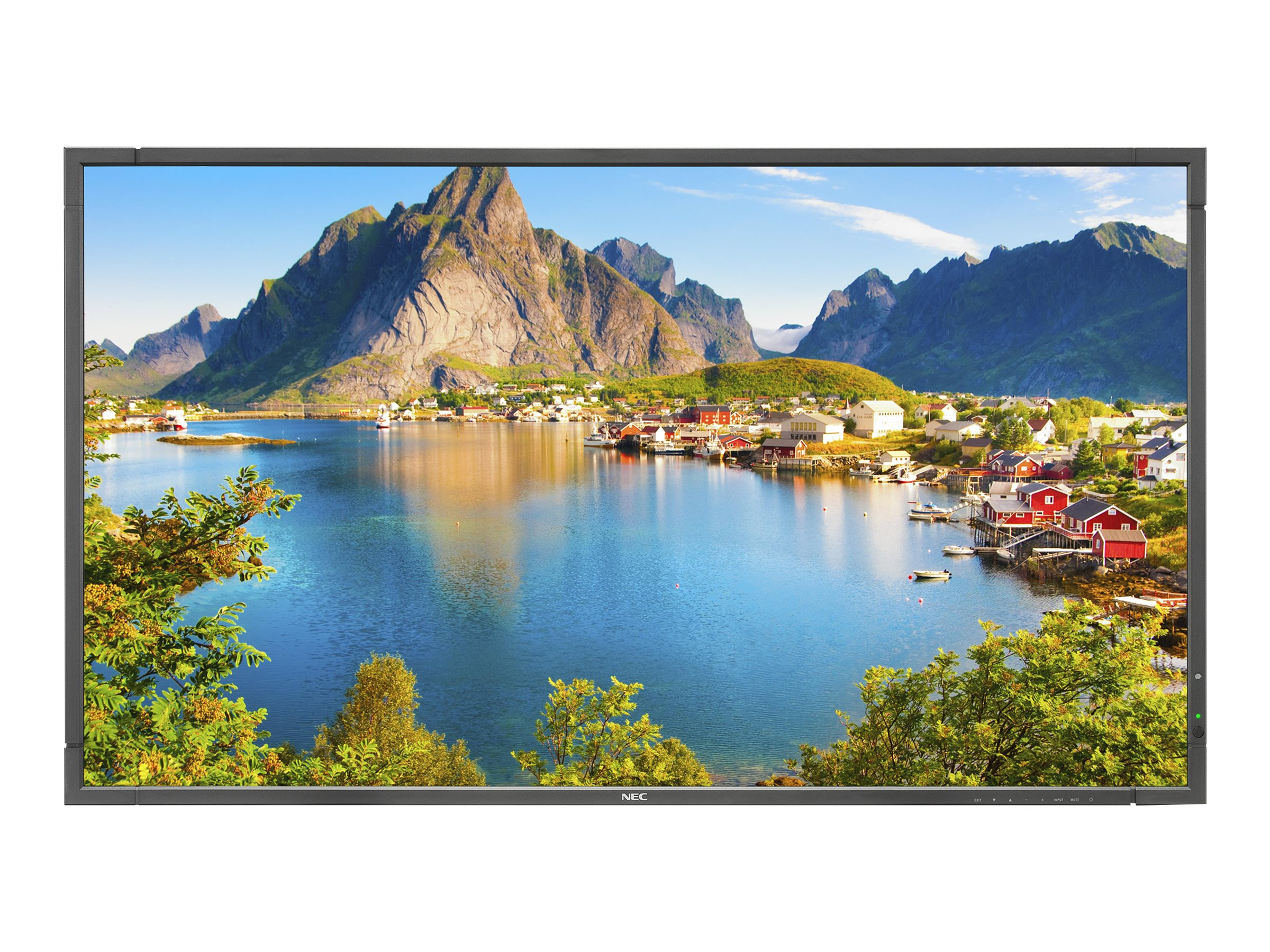 NEC 80 E805 Full HD LED-LCD Display with OPS PC