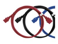 Raritan Securelock Cable 16AWG (1) C14 (1) C13, 3ft, Red (6-pack), SLC14C13-3FTK1-6PK, 16820871, Power Cords
