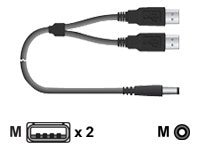 Chip PC Dual USB to Power Cable, 6ft, CPN03788, 11823871, Cables