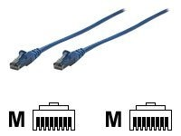 Intellinet Cat6 Patch Cable, Blue, 100ft