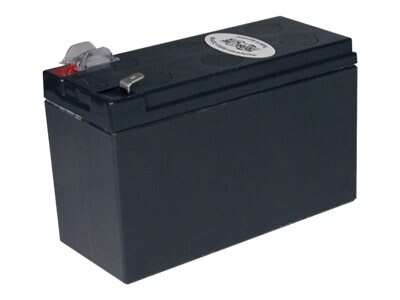 Tripp Lite Replacement Battery for Select APC BE, BK, BR and BP UPS Systems, RBC2A