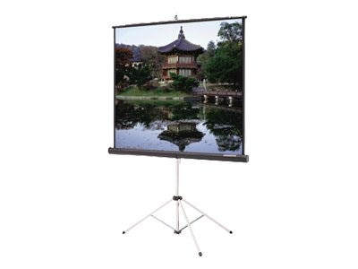 Da-Lite Carpeted Picture King Projection Screen, Matte White, 4:3, 120, 93884, 16349151, Projector Screens