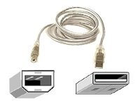 Belkin Pro Series USB 2.0 Cable : A to B, Clear,  10 ft, iMac (F3U133-10-CBL), F3U133-10-CBL, 105872, Cables