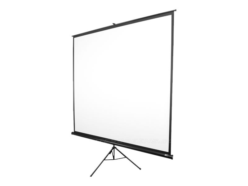 Elite Tripod Series Portable Floorstanding Screen, Matte White, 1:1, 119in