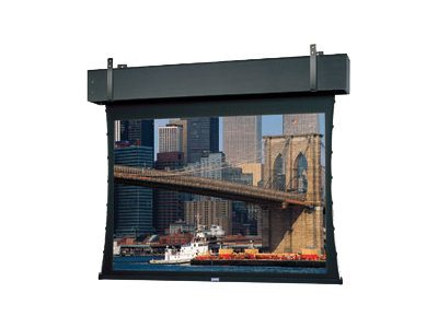 Da-Lite Tensioned Professional Electrol Projection Screen, Da-Tex (Rear), 12' x 16'