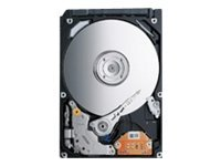 Toshiba 147GB SAS 6Gb s 10K RPM 2.5 Internal Hard Drive, MBD2147RC, 31077043, Hard Drives - Internal