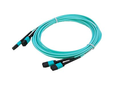 ACP-EP MPO MPO Female to Female Straight OM4 12 Fiber LOMM Patch Cable, 20m, 2-Pack