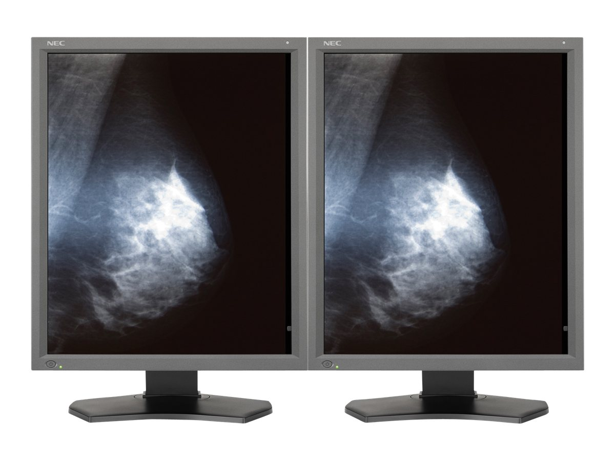 NEC (2) 21.3 MD211G5 5MP LED-LCD Display, Gray with NVIDIA Quadro K2000 Graphics Card, MDG5-BNDN1, 16218776, Monitors - Medical