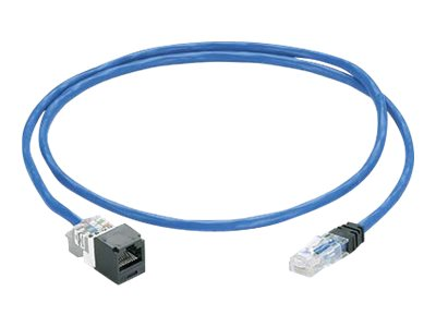 Panduit CAT6 UTP Plenum Solid Cable, Blue, 75ft