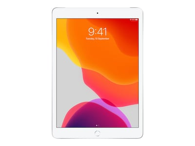 Apple iPad 10.2, 128GB, WiFi+Cellular, Silver, MW712LL/A, 37522460, Tablets - iPad