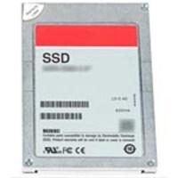 Dell Cust. 960GB SAS Read Intensive MLC 2.5 Hot Plug Solid State Drive, 3000012676846.1, 33990258, Solid State Drives - Internal