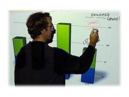 Elite 58 WhiteBoard Screen with Magnet, iWB52VWM, 12120229, Whiteboards