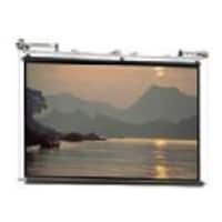 Da-Lite Scenic Roller Projection Screen, 24' x 24', Matte White, 120V Motor, 80844, 17588171, Projector Screens