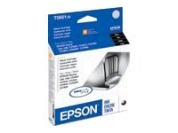 Epson T060120 Main Image from