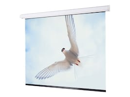 Draper Targa Electric Projection Screen with LVC, Matte White, 16:10, 123, 116369L, 11583969, Projector Screens
