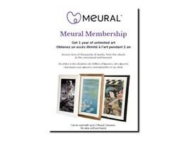 Netgear Meural Annual Membership Card, MCMYA-100PAS, 36924811, Digital Picture Frames