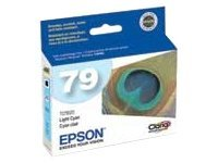 Epson T079520 Main Image from
