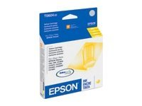 Epson T060420-S Main Image from