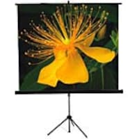 Mustang AV Projection Screen with Tripod, Matte White. 1:1, 99in, SC-T7011, 8125983, Projector Screens