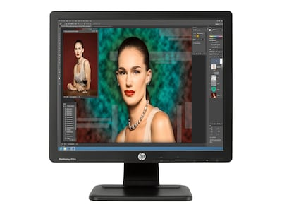 HP ProDisplay 17 P17A LED-LCD Monitor, Black, F4M97A8#ABA, 16635975, Monitors