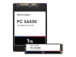 SanDisk SDASB8Y-1T00 Main Image from Front