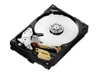 HGST, A Western Digital Company HDS721010CLA332 Main Image from